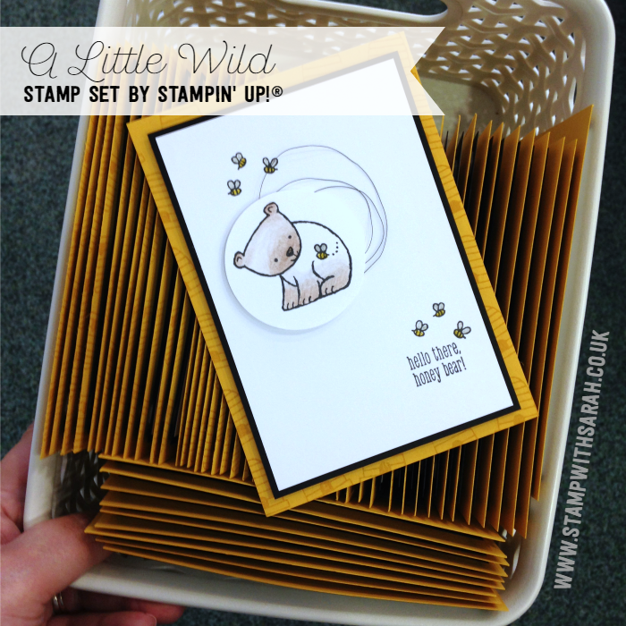 A Little Wild stamp set, new to Stampin' Up! Catalogue 2017-2018