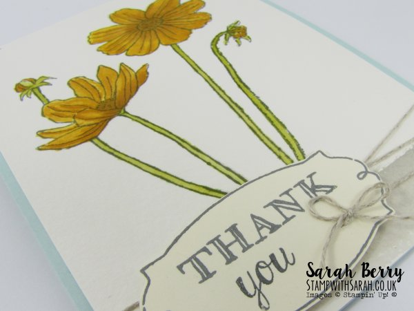 Helping Me Grow card close up for Cas(e) this sketch #156 by Stampin Up Demonstrator Sarah Berry