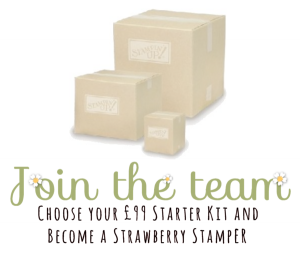 join-the-team-with-a-99-starter-kit-with-boxes