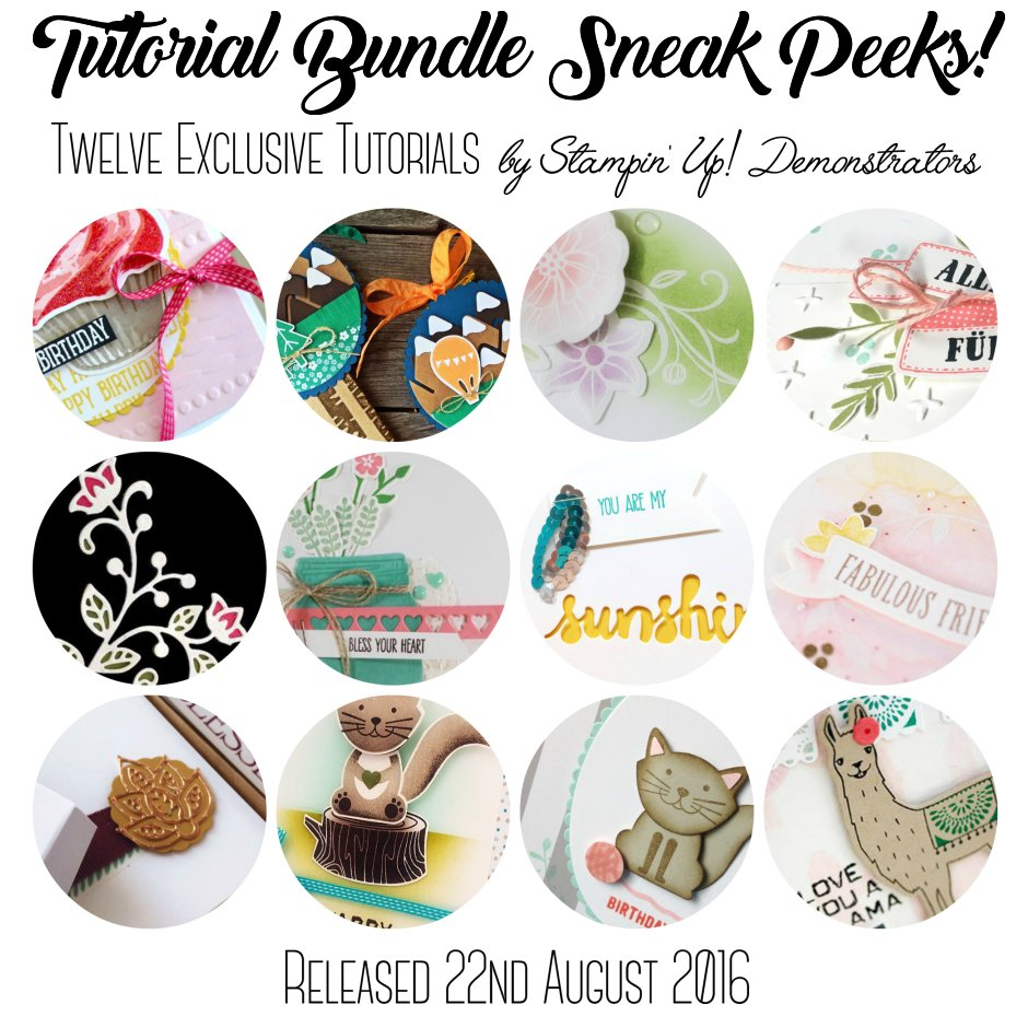 Tutorial Bundle Sneak Peeks for 22nd August